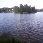 Rīta pelde